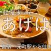 【お気軽健康cafe あげは。】【vegan対応】毎朝農家さんから届く新鮮な野菜と玄米と、